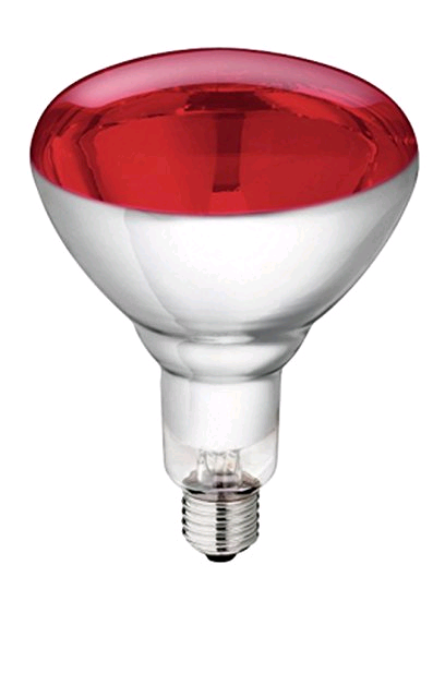 Crompton 250ES Infra Red Lamp RED