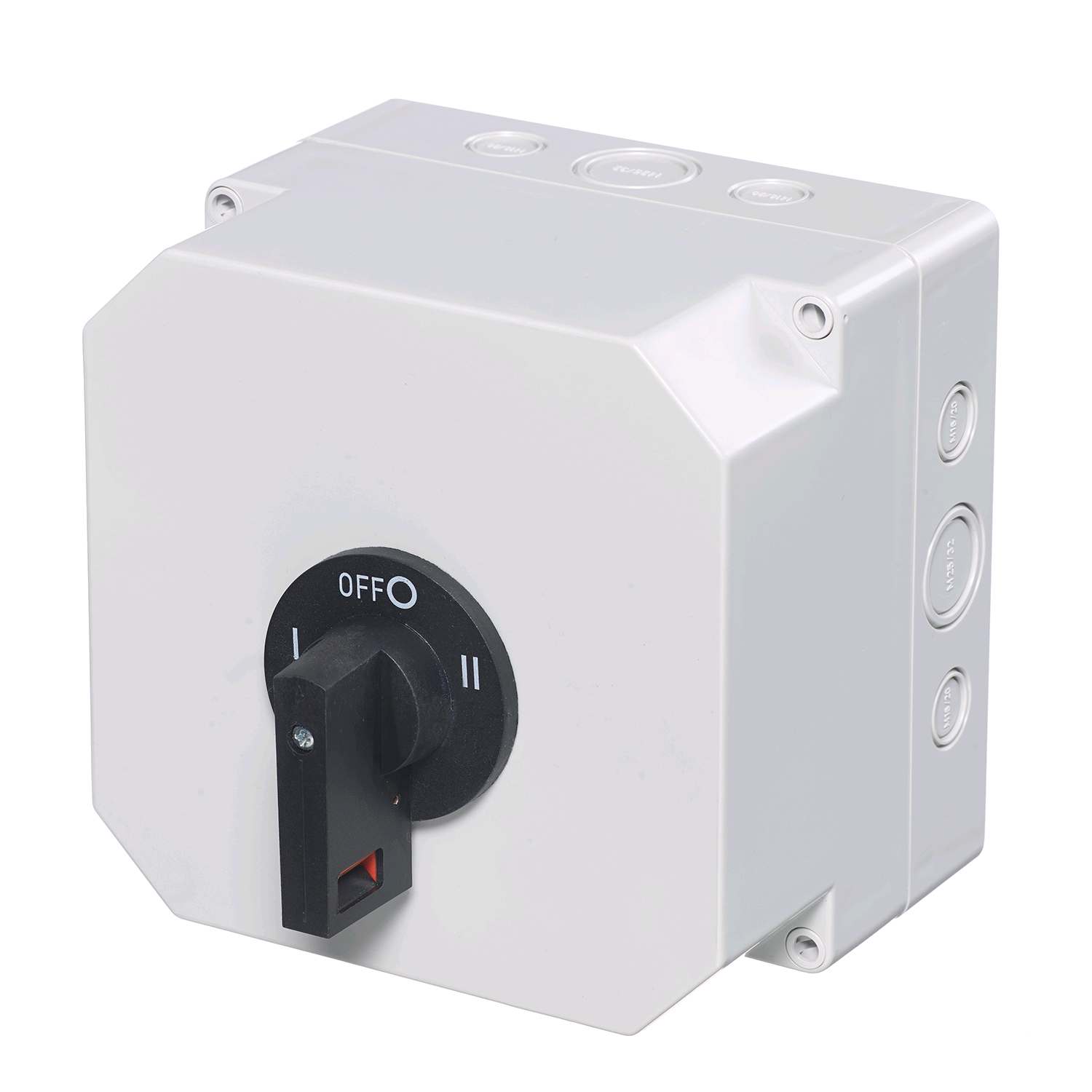 Europa 63A 2 Pole Changeover Switch