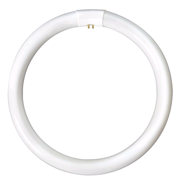 Lamp Fluo Circular 16in 60w Warm White