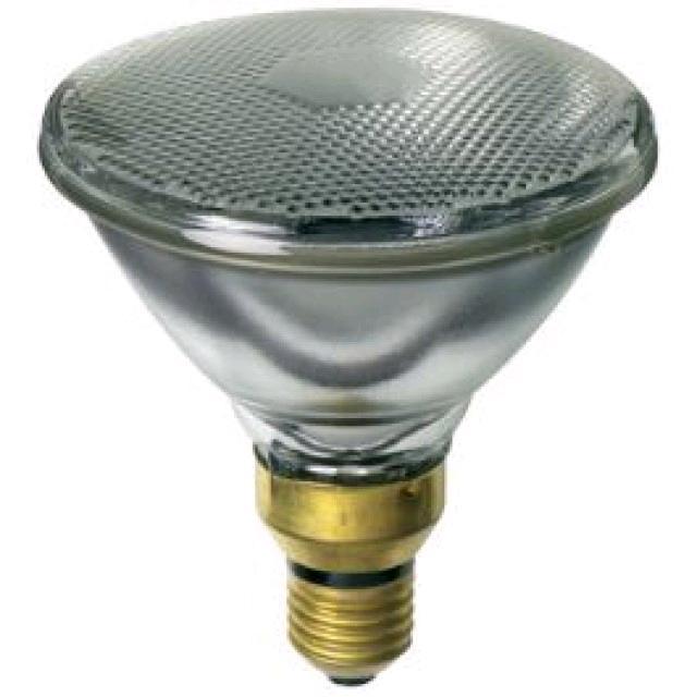 Lamp PAR38 120W ES Spot