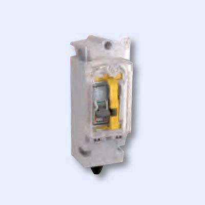 Niglon Trojan 32A D/P Switched/Fused Isolator Street Light