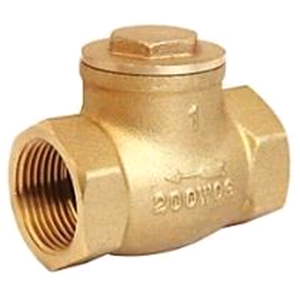 "Brass 1"" Swing Check Valve"