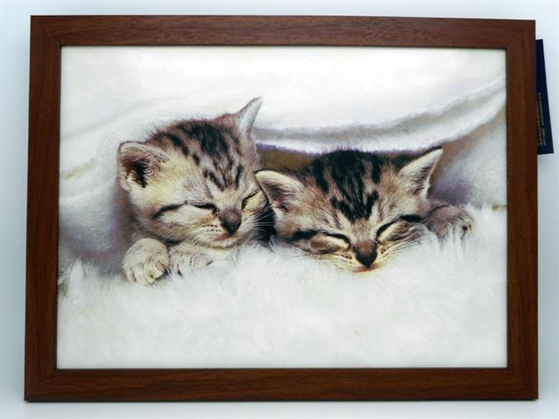 Home Living Cosy Kittens Lap Tray