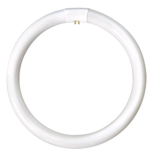 Lamp Fluorescent Circular 8in 22w White