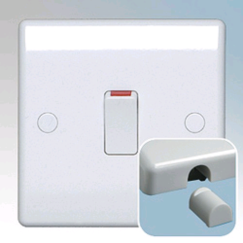 BG 20a Double Pole Switch with Flex Outlet