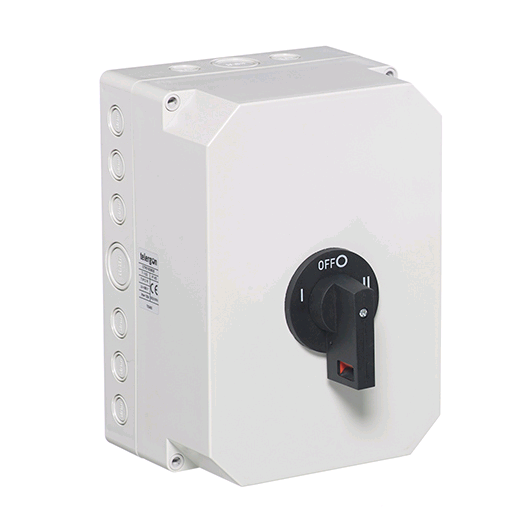 Europa 100a 2 Pole Changeover Switch (Insulated Enclosure)