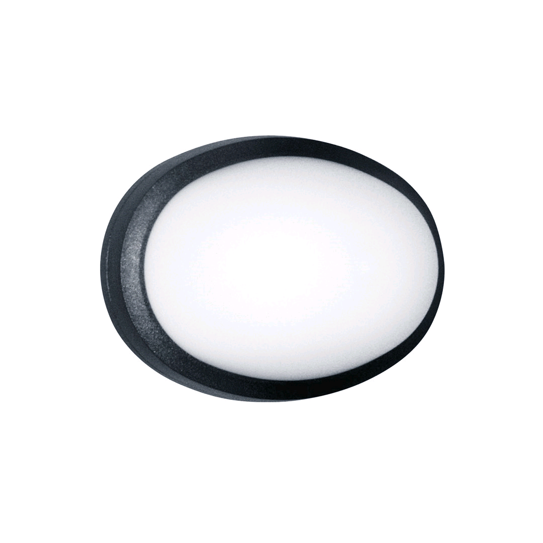 ASD Clarity Portrait LED Black Plain Premium Opal LED 600
